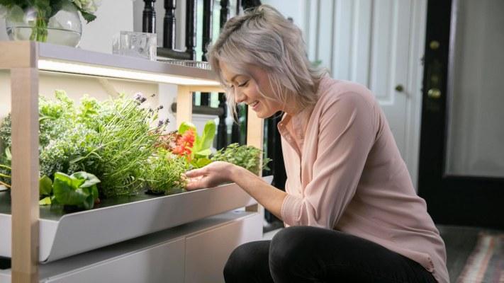 Rise Gardens crece con la Serie A de $ 9 millones para ayudar a cualquiera a convertirse en un granjero de interior – TechCrunch