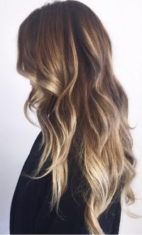 Bronde Obsession  Mane Interest