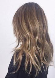 blonde hints bronde mane interest