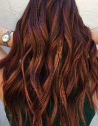 pictures of dark copper colored hair mane interest page 5