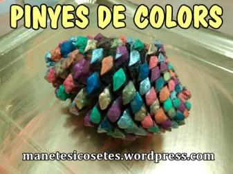 pinyes pintades de colors 01