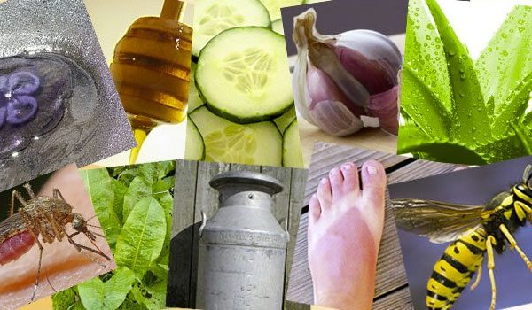 Summer Woes | 10 Natural Remedies