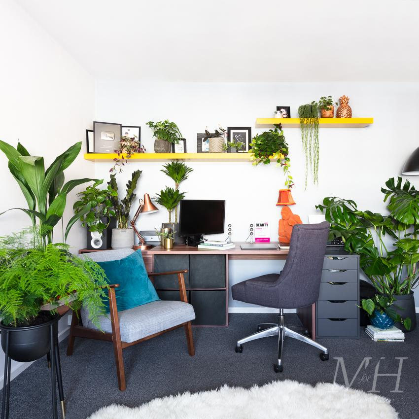 the-joy-of-plants-after-home-transformation-man-for-himself