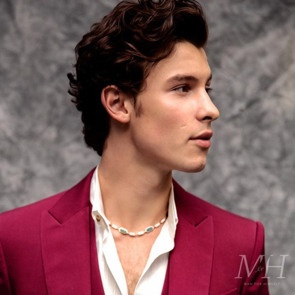 Shawn Mendes: Medium Length Curly Hair