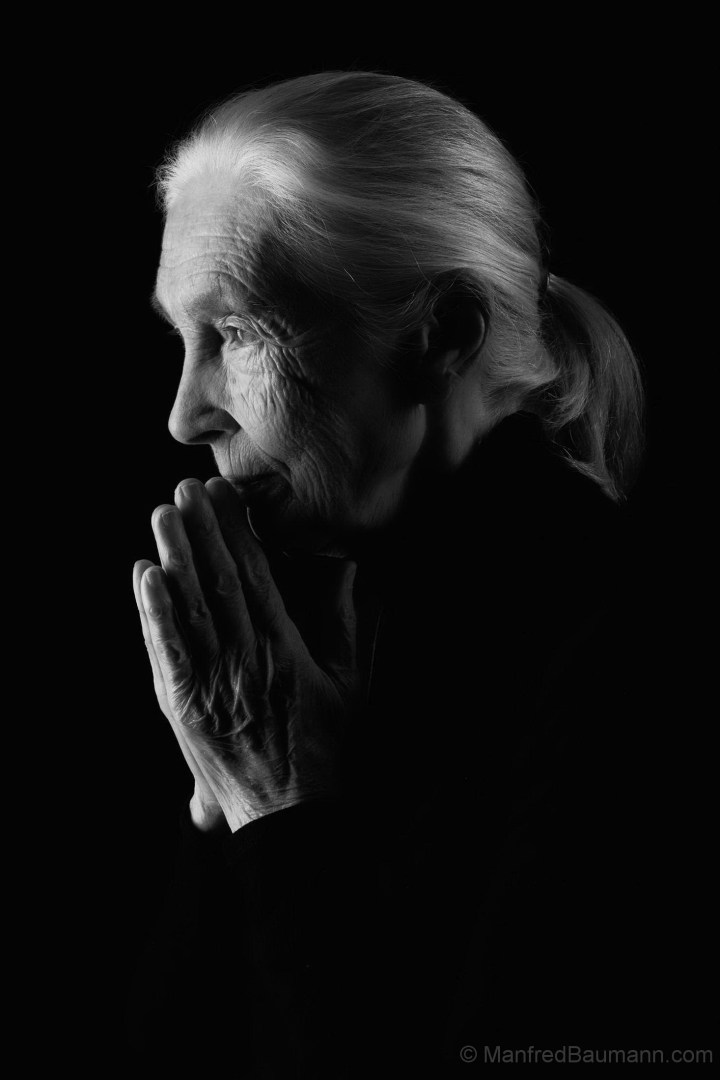 Jane Goodall by Manfred Baumann 2019 1