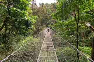 Arenal Hanging Bridges 1