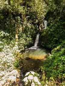 Wasserfall Monteverde Feb 16-3