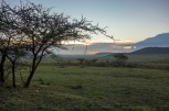 Ngorongoro Area bei Nasera Rock-2017-1-2