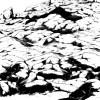 大岩黒サムネ