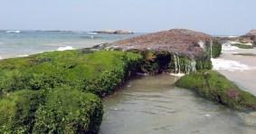 Someshwara-beach-Ullal6