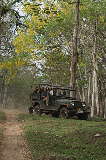 kabini-river-lodge12