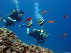 scuba-diving-udupi-3