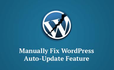 """Bản cập nhật mới của WordPress gây lỗi với tính năng """"Tự động cập nhật"""""""