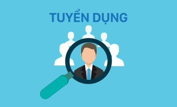 Công ty Minimal tuyển lập trình viên và thiết kế web ở Quy Nhơn và Tp.Hồ Chí Minh