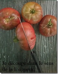 conservation tomates 1