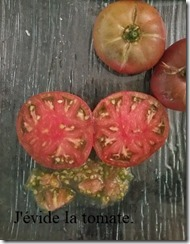 conservation tomates 2