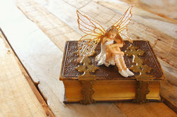 stock-photo-image-of-magical-little-fairy-in-the-forest-sitting-on-old-story-book-436416283