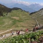 Peloton dans les Bauges et alpages - MaXi-Race (Photo Cyrille Quintard)