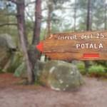 Découverte du parcours trail des 25 bosses