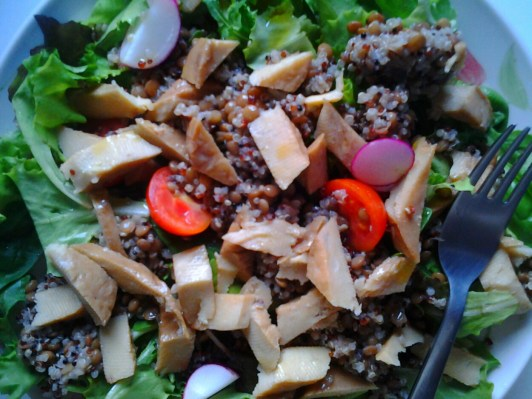 Insalata gustosa di seitan,quinoa,lenticchie e verdure fresche