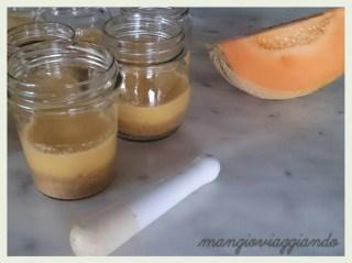 Cheesecake leggera melone cocco