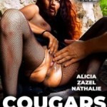 Cougars Bien Humides / Well Wet Cougars