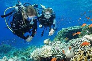 padi scuba diver course subic bay