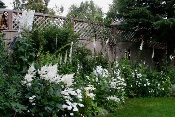 white garden mangotangerine
