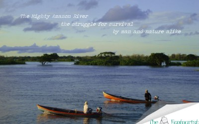 The Mighty Amazon River – The Struggle for Survival by Man and Nature