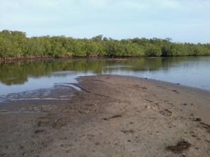 low tide (1)