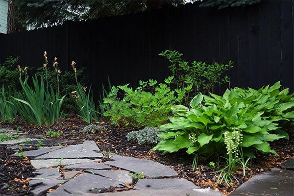 gardenwide