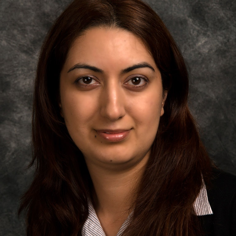 Zahra Shahbazi Manhattan College Riverdale Ny