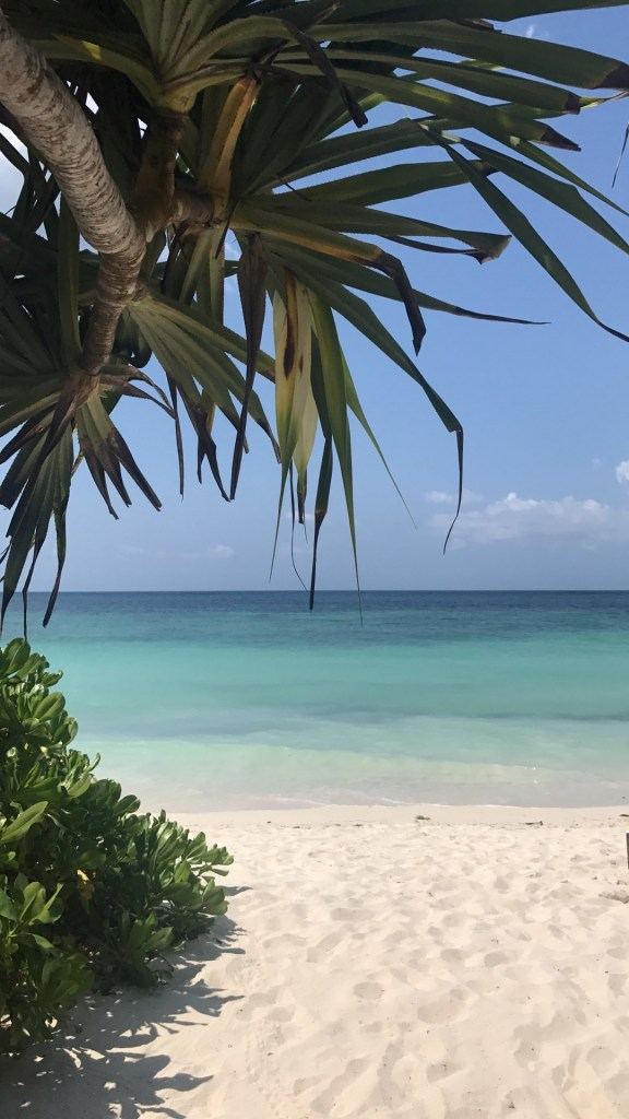 Though the beach is a 20 minute walk from the resort front, the beach at Melia Zanzibar is well worth it.