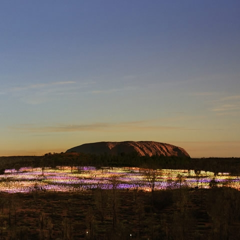 Sunset is an ideal time to view the Field of Light in Uluru.
