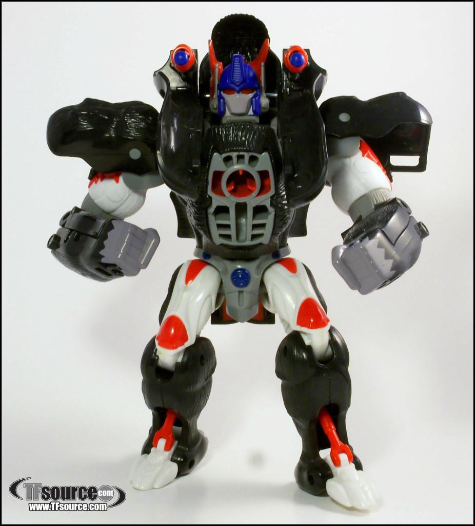 BW-Optimus-Primal_2