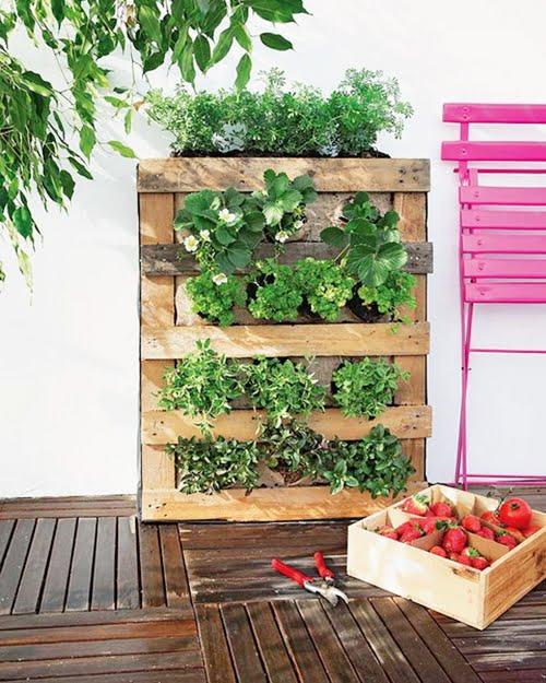 jardim vertical 1 DIY: faça um jardim vertical!
