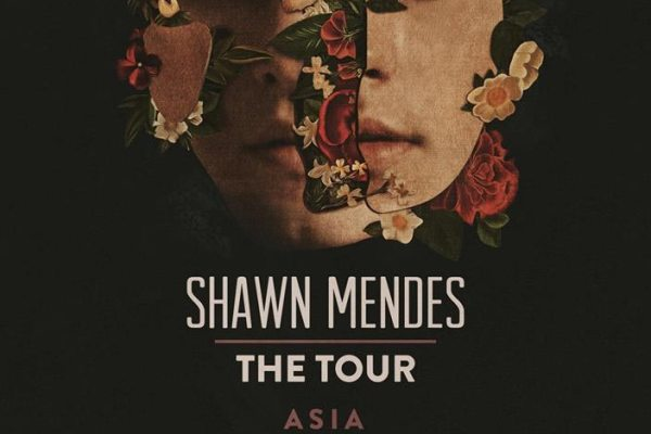 Shawn Mendes 2019