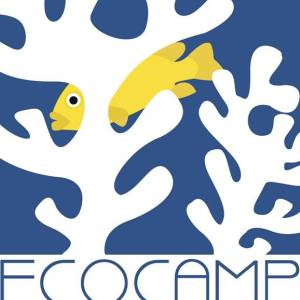 Ecocamp by the Sea