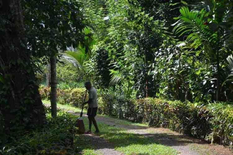 Plantation Villa Resort-Sri Lanka-Maninio.com