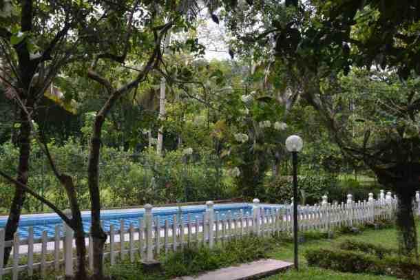 Swimming pool in Plantation Villa Resort in Kalutara-Sri Lanka. maninio.com #resortsrilanka #villaresort