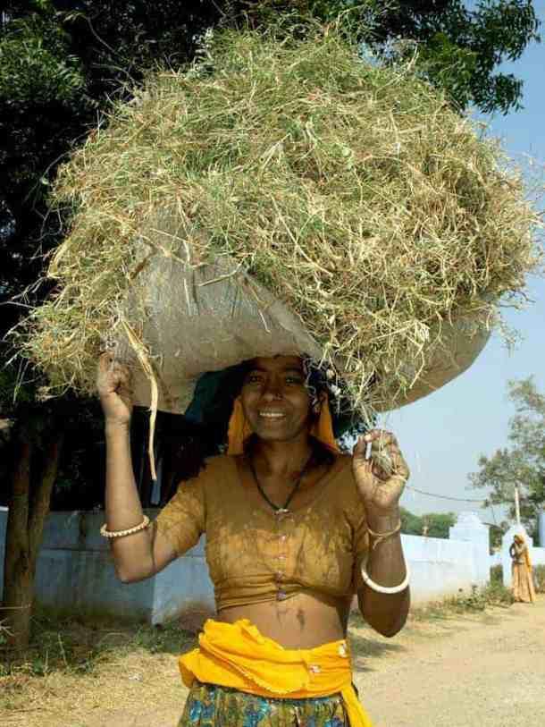 Rajasthan Indian women.. maninio.com #Rajastanjaipur #Agradelhi