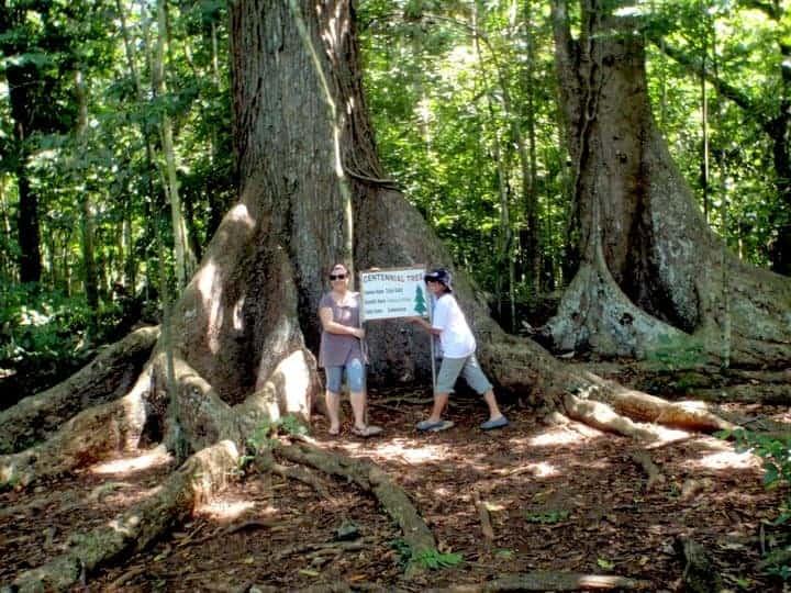 Forest Initao city - Cebu town Philippines #Initaotown #Philippinesasia | maninio.com