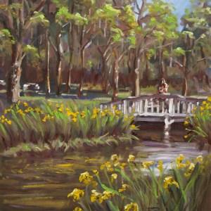 Yellow Irises Charleston landscape