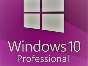 Microsoft-Windows-10-Pro-3000 original deal logo
