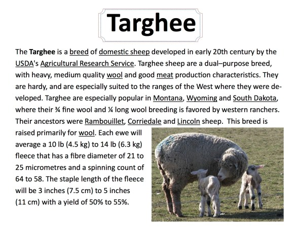 breed-info-targhee