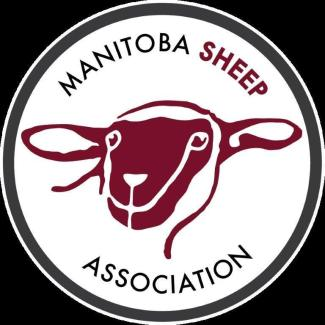 MB Sheep Logo.gr.Eng.300res (2)