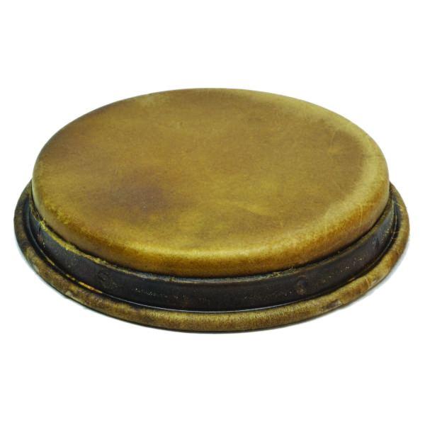 Medium brown bongo hembra premounted head