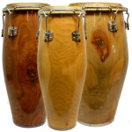 Solid Shell Congas