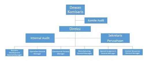 Struktur Dewan Komisaris Dan Sistem Dua Tingkat