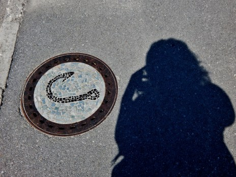 Lovely circles on Mengeš streets.